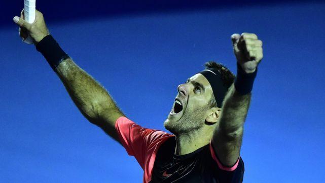 Del Potro ganó en Acapulco y avanzó al puesto 8 del ranking ATP